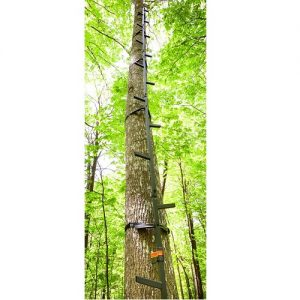 Guide Gear 20-Inch Climbing Sticks